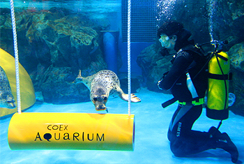 COEX Mall &  Aquarium photo